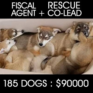 Fiscal Agent and Co-Lead 161 Dog Rescue - $74,000