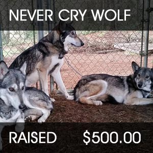 raised for never cry wolf