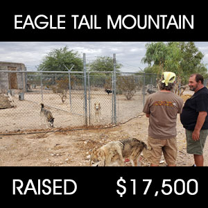 raised for food - Eagle Tail Mountain Sanctuary