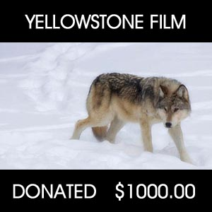 donated to Yellowstone Documentary Film