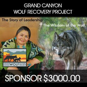 Grand Canyon Wolf Recovery Project Sponsorship