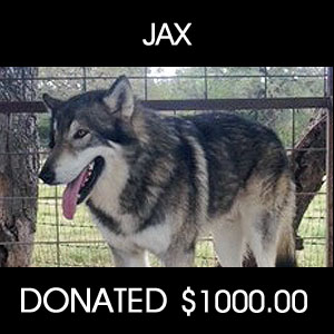 donated to save JAX