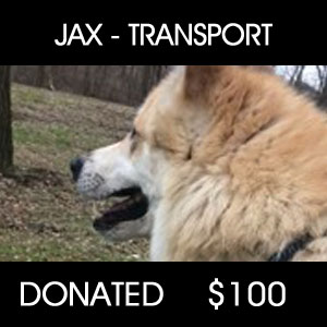 Jax Transport - $100