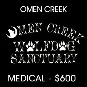 donated to Omen Creek Wolfdog Sanctuary