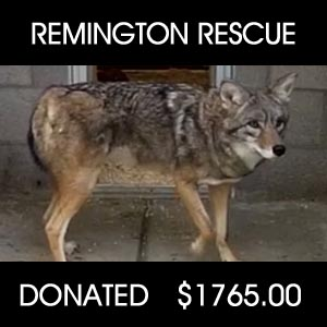 donated to Remington Rescue
