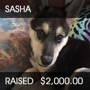 raised for Sasha