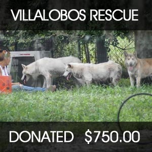 donated to  Villalobos Rescue Center